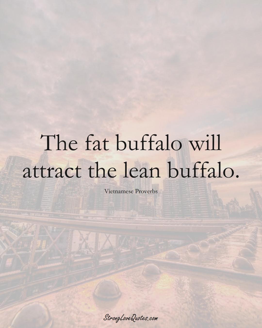 The fat buffalo will attract the lean buffalo. (Vietnamese Sayings);  #AsianSayings