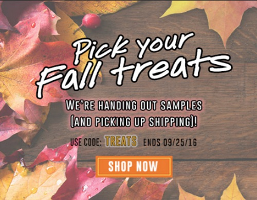 Kiehls Free Fall Deluxe Samples + Free Shipping Promo Code