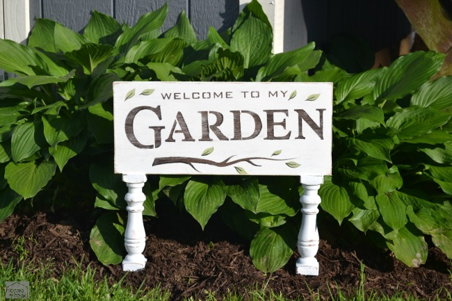 White garden sign in front of hosta