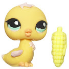 Littlest Pet Shop Singles Chick (#1037) Pet