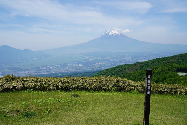 富士見ヶ丘公園