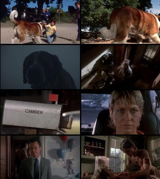 Cujo 1983 Dual Audio Hindi 720p BluRay 700mb