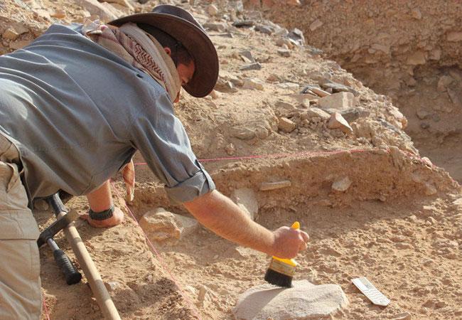Penelitian Homo erectus went extinct because they were lazy