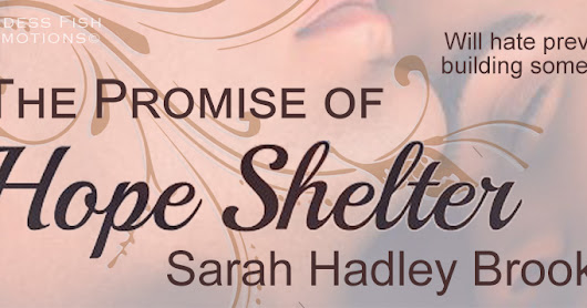 The Promise of Hope Shelter by Sarah Hadley Brook @goddessfish