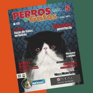 Revista Perros y Gatos