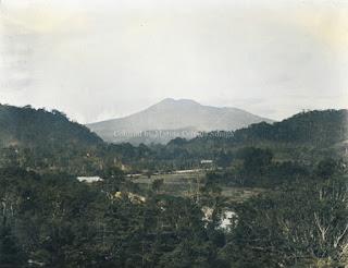 perbukitan dengan latar gunung berapi di batang toru