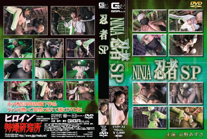 TSW-34 Ninja < net limited edition >quantity pertama
