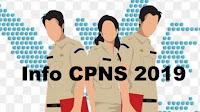 cpns, karir cpns 2019, penerimaan cpns 2019, lowongan kerja 2019