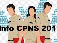 Daftar Formasi dan Persyaratan Penerimaan CPNS Tahun 2019 (44 Pemda)