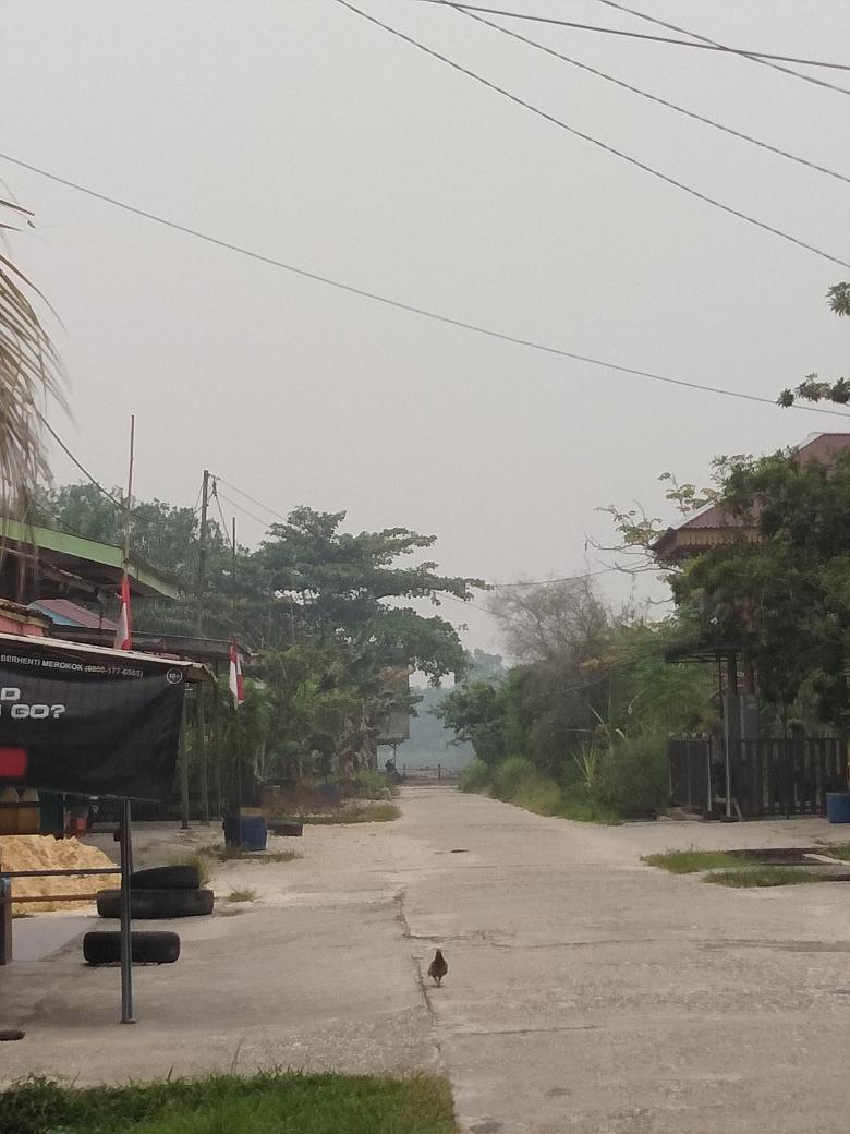 Menteri Indonesia Kena Semprot Menteri Malaysia Gara-gara Asap