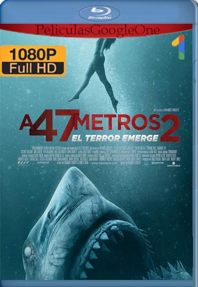 Terror a 47 Metros: El Segundo Ataque (2019) BRRip 1080p [Latino-Ingles] – Luiyi21
