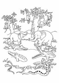 رسومات للتلوين للأطفال صور رسومات لتعليم التلوين
