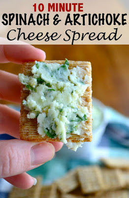 Tailgate Time! 20+ Favorite Recipes - Spinach and Artichoke Cheese Spread