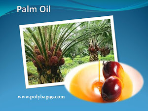 Palm Oil Controversy