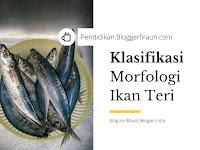 Klasifikasi dan Morfologi Ikan Teri, Lengkap!