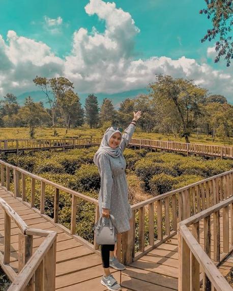 wisata alam kebun teh wonosari