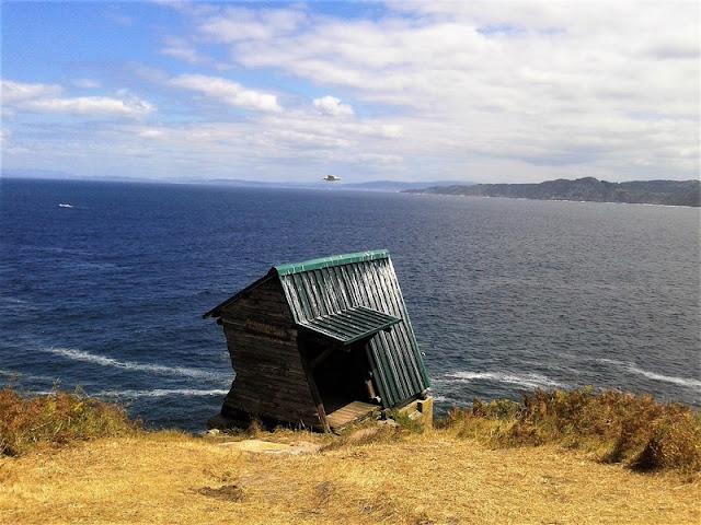 Mirador de aves en Islas Cíes