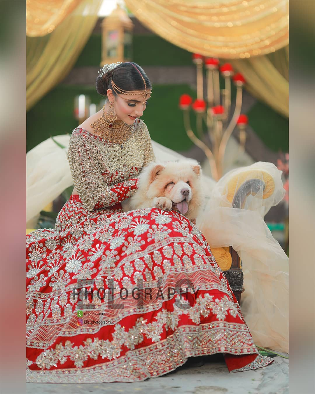 Beautiful Bridal DP 2020