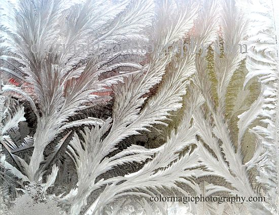 Hoar frost on window glass