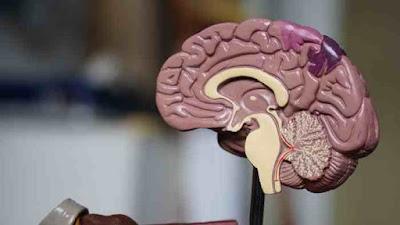 تمارين تنشيط الدماغ