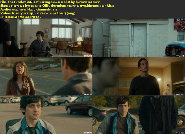 Descargar The Fundamentals of Caring Latino por MEGA.
