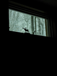 Window Showing Moose And Snow Covered Trees