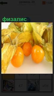 лежат желтые плоды физалис с листьями желтого цвета