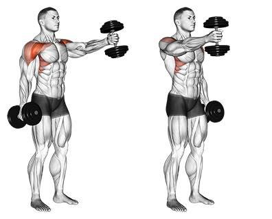 برنامج قوي لتطوير الصدر العلوي والأكتاف رياضة كمال الأجسام musculation