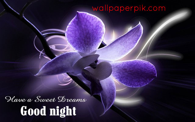 graphic  good night images wallpaper download