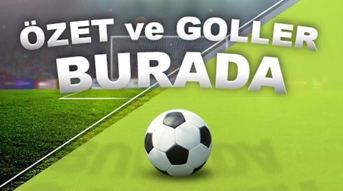 Fenerbahçe 2 - 1 Başakşehir Maç özeti