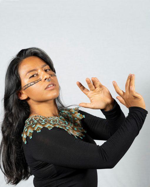 Musical Activism: Ceiba's lyrical war against environmental inequality.