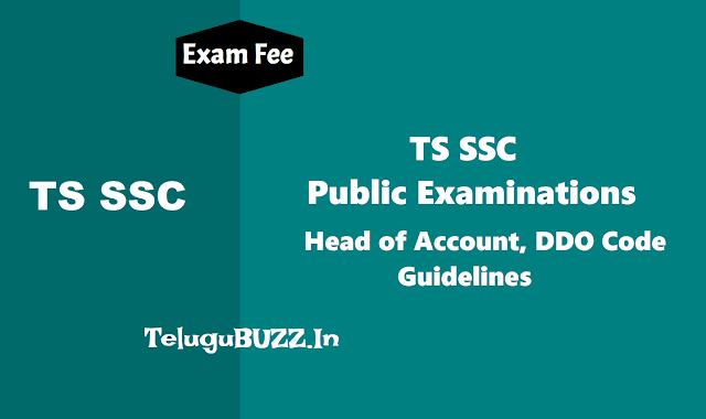 guidelines to hms for remittance of ssc 2019 exams fee,ts ssc 2019 exams fee dates,exams fee schedule,head of account,ddo code