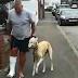 Σκύλος κουτσαίνει όπως το αφεντικό του από συμπόνια