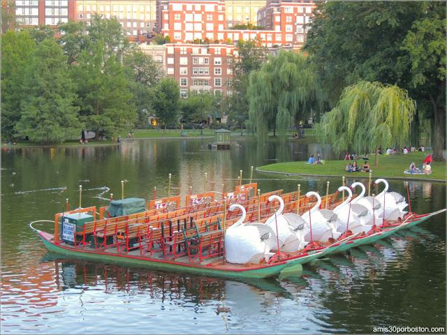 Botes de Cisnes del Boston Public Garden