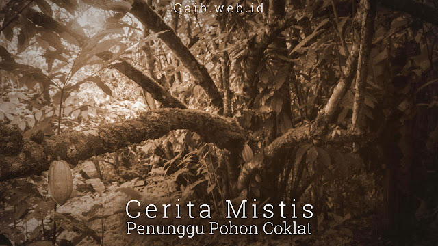 Kisah Misteri Penunggu Pohon Coklat