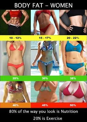Visceral Fat Women 115