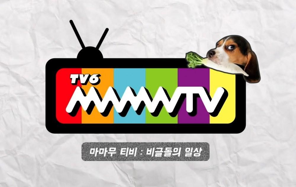 MMMTV Mamamoo TV