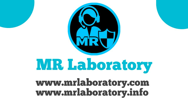 Get 350+ do follow backlink with free - MR Laboratory