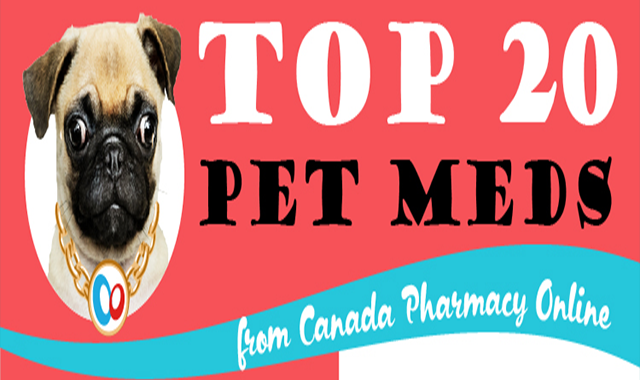 Top 20 Pet Meds from Canada Pharmacy Online #infographic
