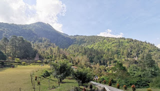 Java central, Gedong Songo.