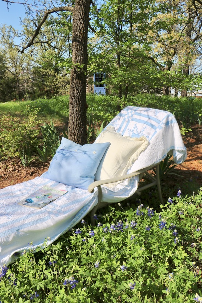 Add a chaise lounge in Backyard Bluebonnets to bring nature up close