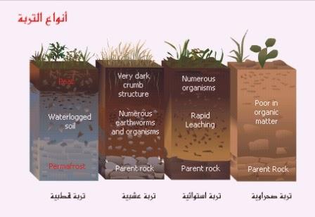 أنواع التربة وخصائصها..وكيفية تكوين الصخور   الجغرافيا ...