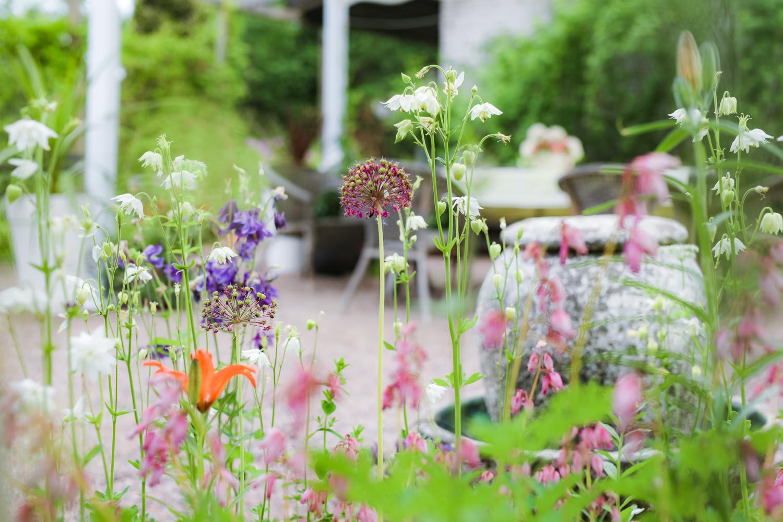 kesä-ja-kukkakimput-100outdoor