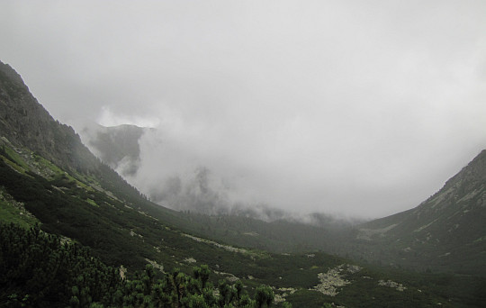 Dolina Mięguszowiecka (widok na południe w kierunku wylotu doliny).