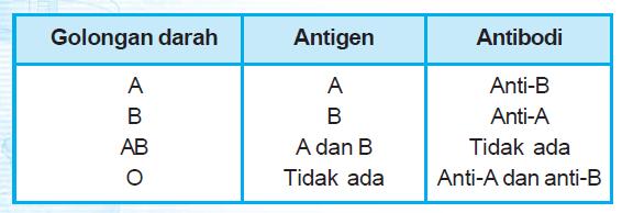 Image result for golongan darah antigen antibodi