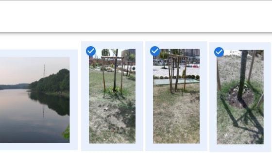 Google Fotoğraflar Uygulamasından Windows 10 Fotoğraflar Uygulamasına Resim Nasıl Eklenir?