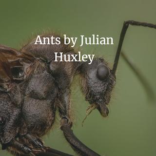 Ants by Julian Huxley Free Biology