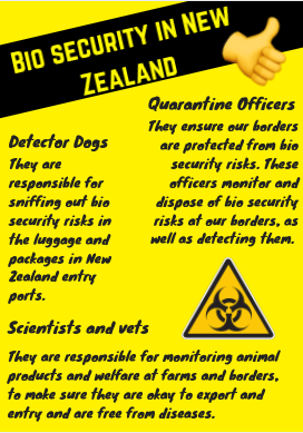 this is the poster i created displaying the bio security roles we have in new zealand