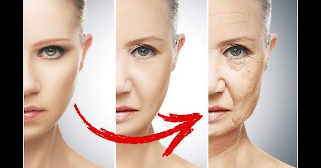 Aliments qui font vieillir