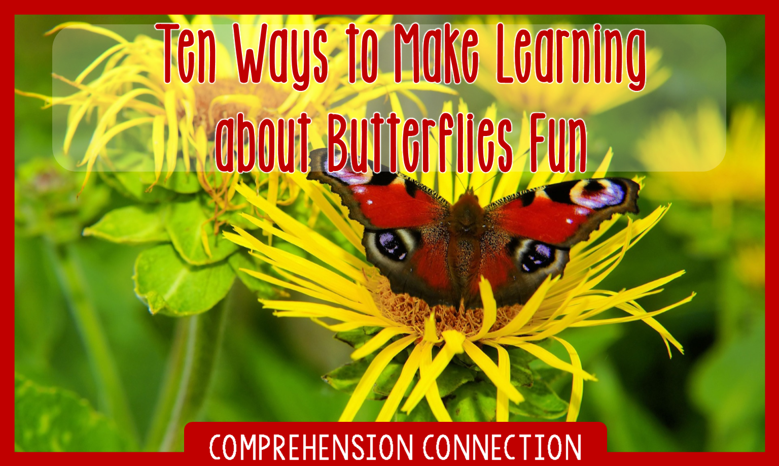Celebrate spring with a unit on butterflies! This post includes a collection of teaching ideas and resources to make your planning easy.